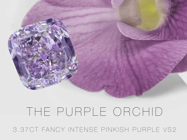purple orchid diamond